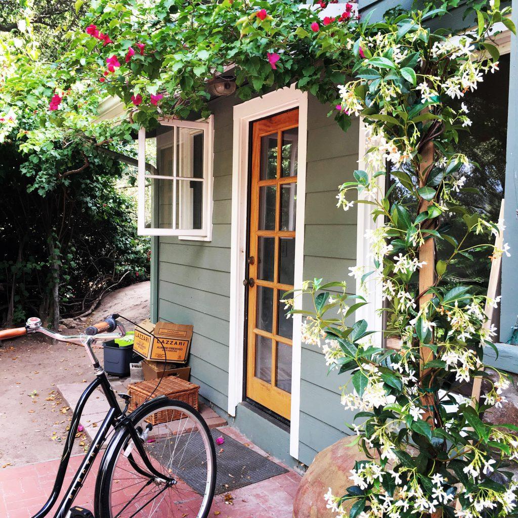 bicycle by backdoor blooming jasmine