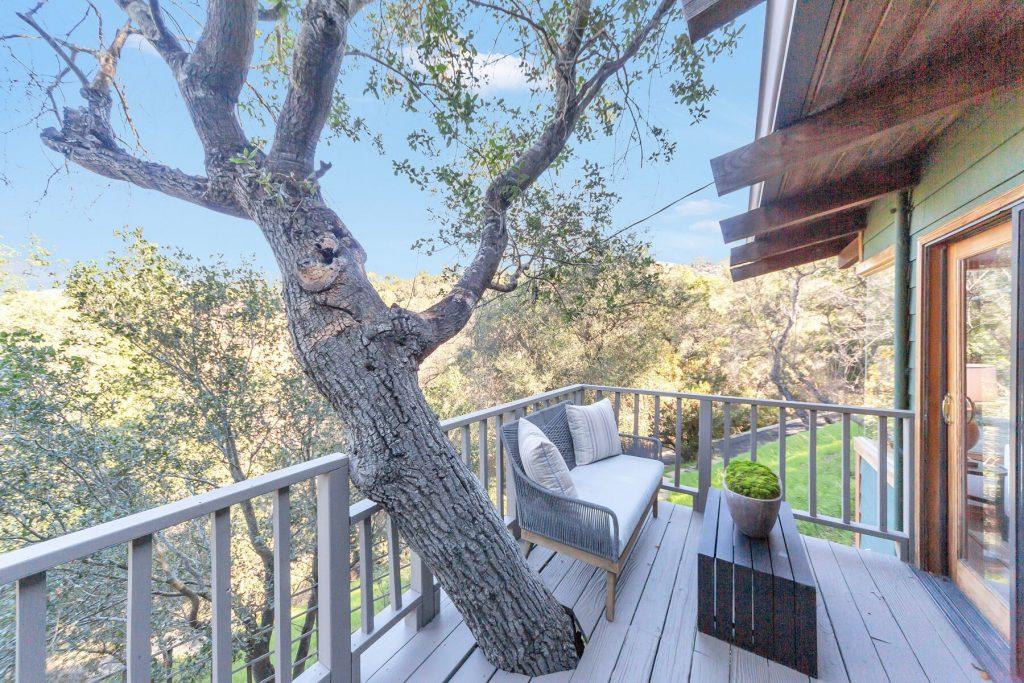 oak growing through deck seating area