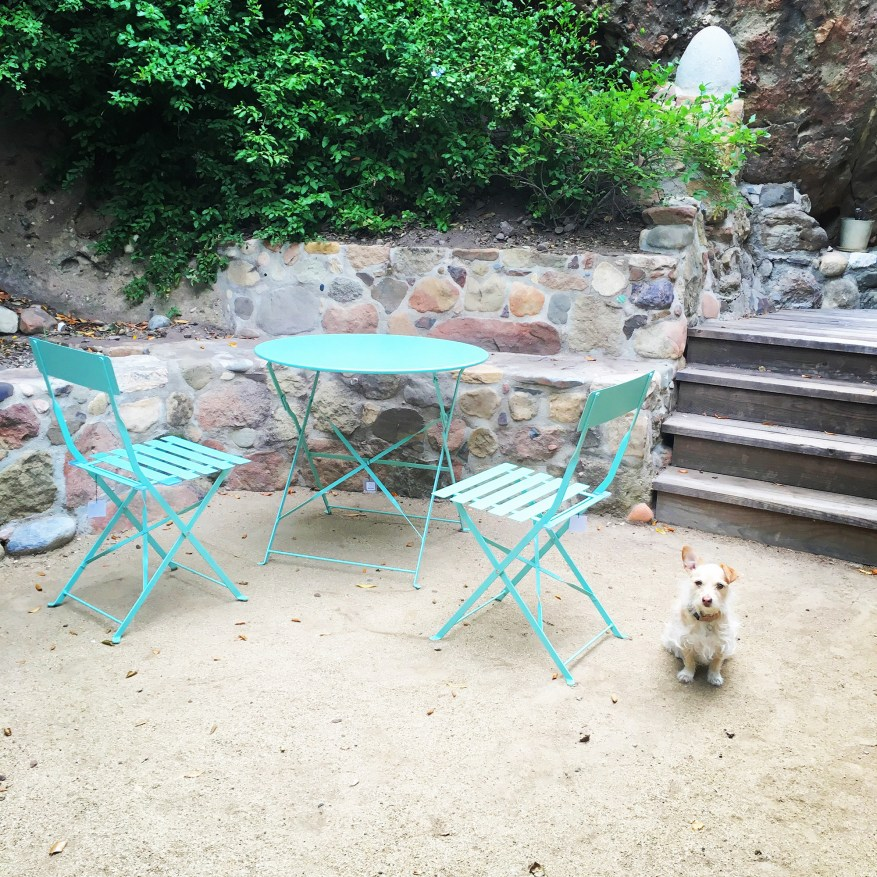 patio with custom sstone wall and cute dog