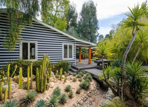 cactus garden yard